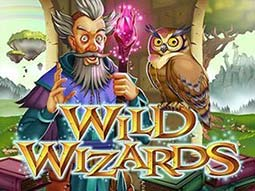 wildwizards 375x281